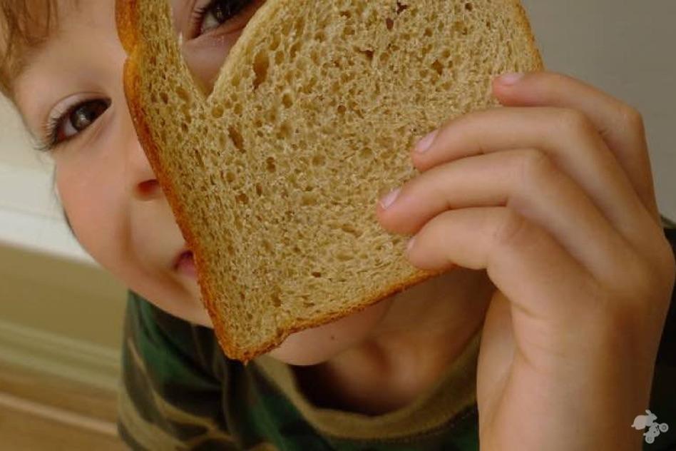 hoe wordt eten een drol