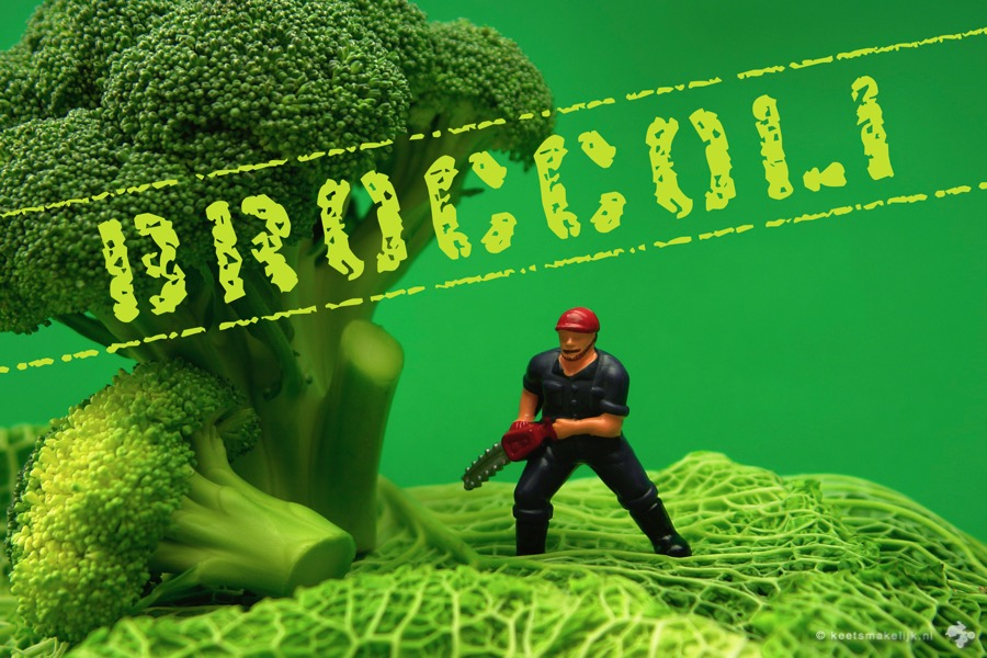 big bang broccoli broccolege groentesnacks keet smakelijk