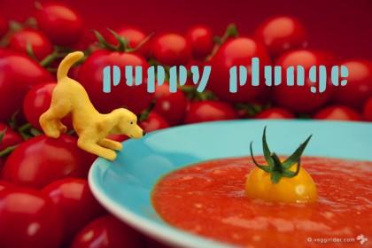 recipe_puppy_plunge_©