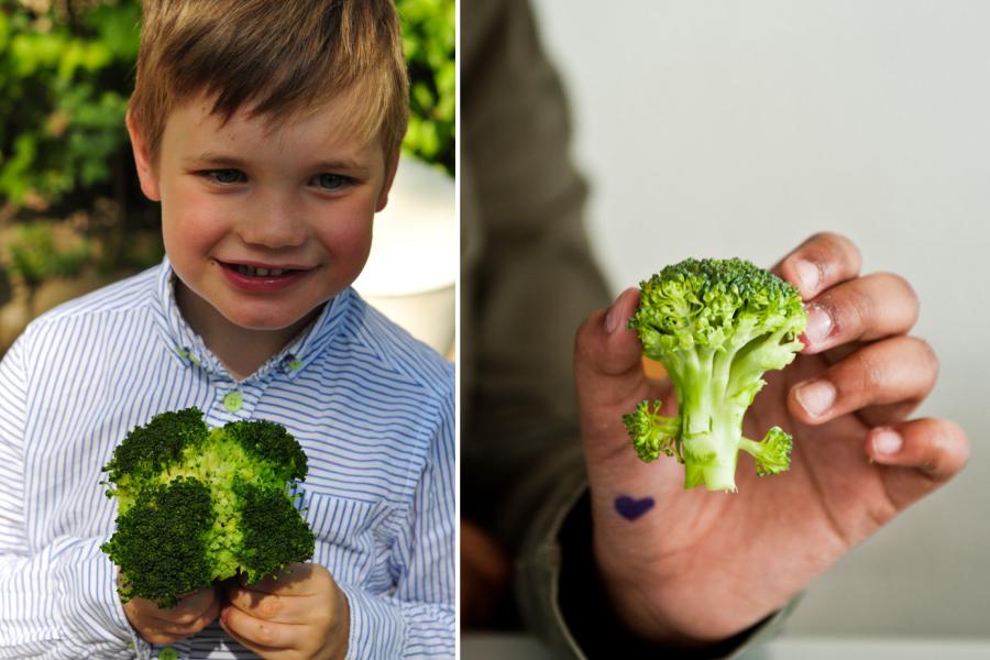 kind eet geen groente