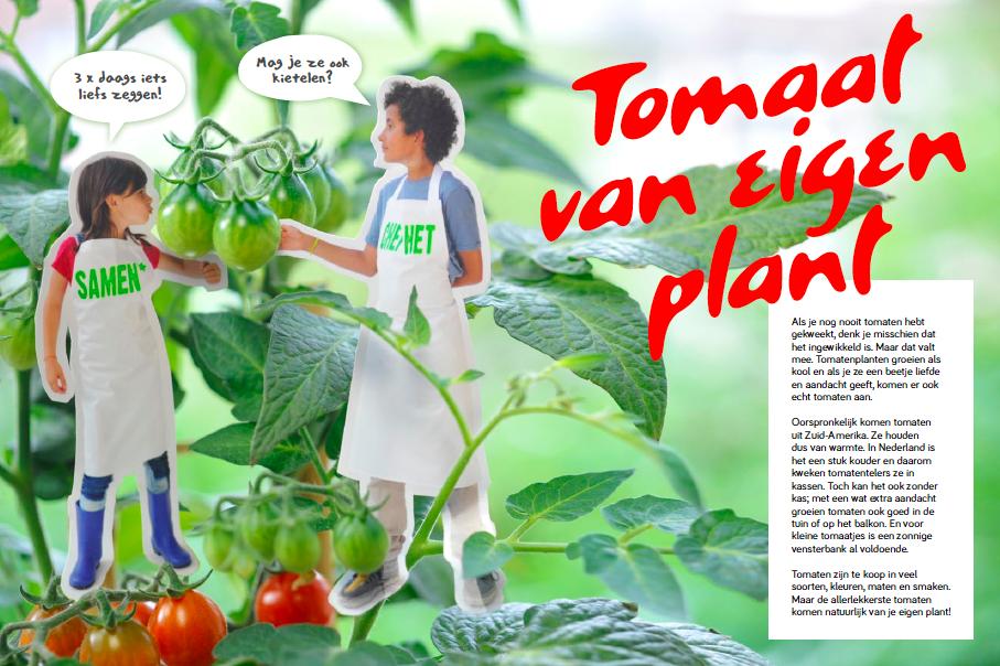 tips voor meer groente